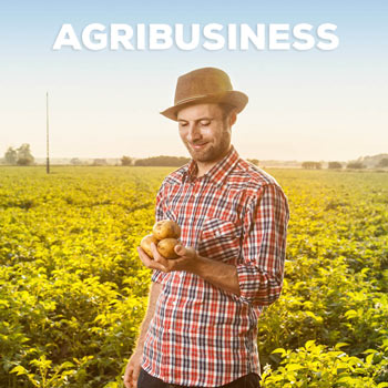 contact-Agribusiness